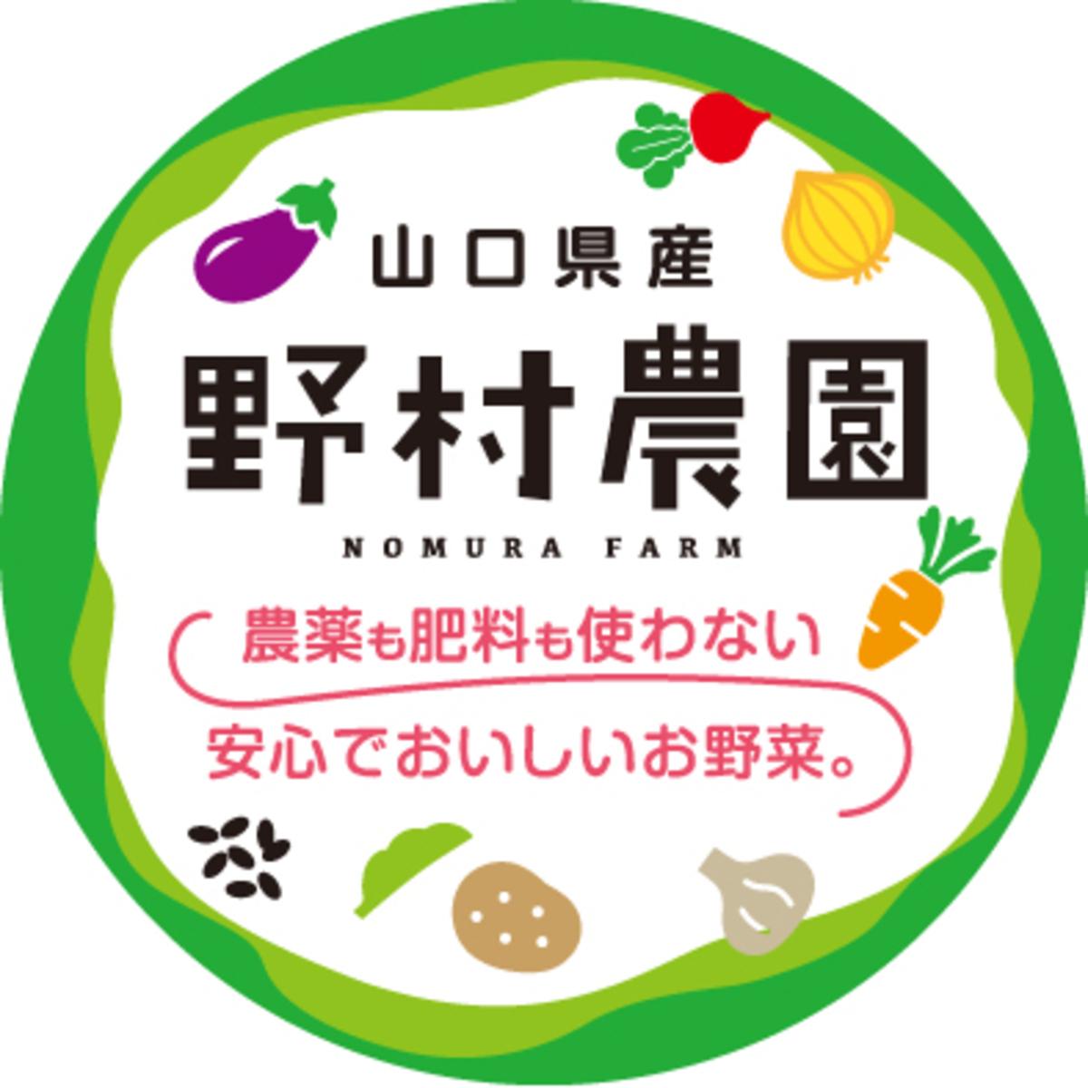 野村農園 旬のお野菜セットイメージ1